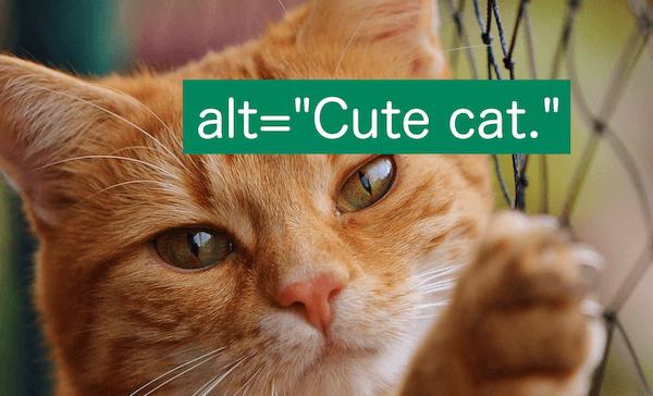 图片Alt属性是什么及其作用