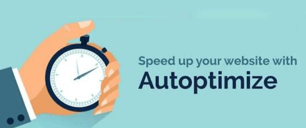 网站速度优化插件 Autoptimize