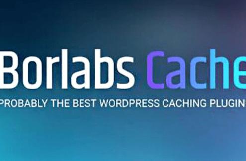 网站速度优化插件 Borlabs Cache